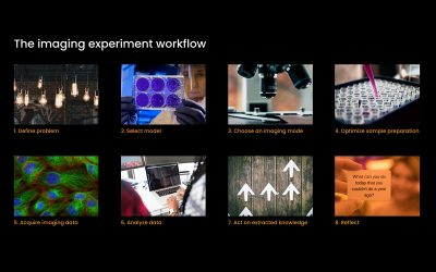 The Imaging Experiment: More Than Pretty Pictures